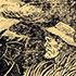 """Шкільний твір для 8-го класу за оповіданням Олександра Довженка """"Ніч перед боєм"""""""
