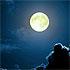 Зачатие по Лунному календарю