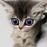 Аватар пользователя OlgaBor